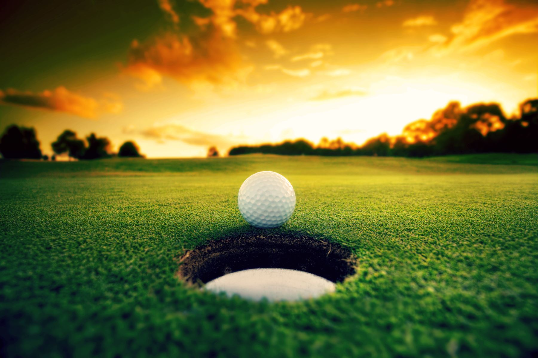 Golf Ball Near Cup